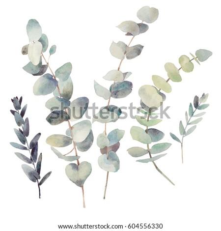 Akwarela nowoczesne dekoracyjny zestaw zielony liść Zdjęcia stock © bonnie_cocos