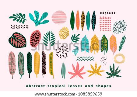 Vektor nyár idő illusztráció pálmalevelek tipográfia Stock fotó © articular