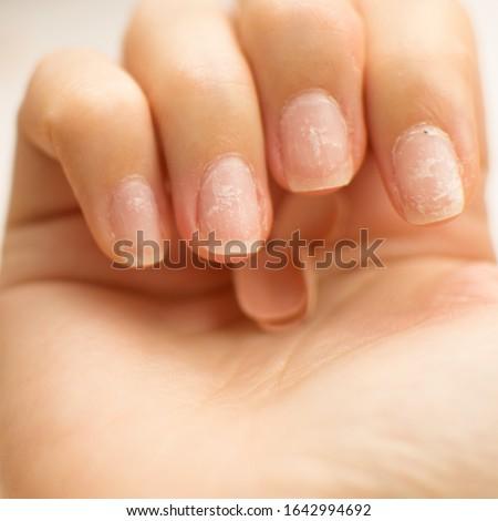 mooie · vrouwelijke · vinger · nagels · natuurlijke · nagel - stockfoto © serdechny