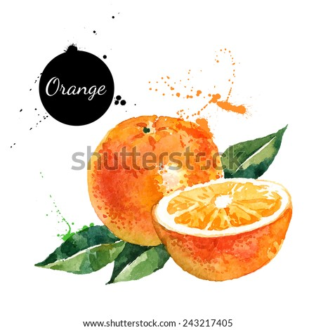 Watercolor orange banner. Hand painted banners isolated on white background. Stock photo © Natalia_1947