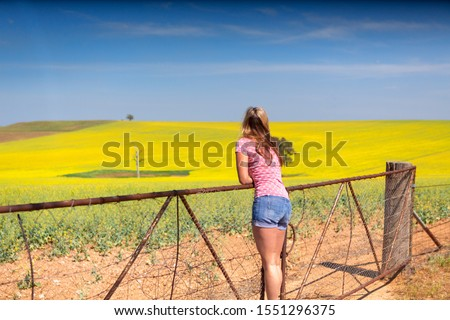 Female leaning on farm gate looks over rolling hills farmlands of golden canola Stock photo © lovleah