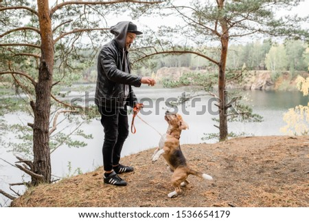 Young man giving something tasty to cute purebred beagle puppy during chill Stock photo © pressmaster