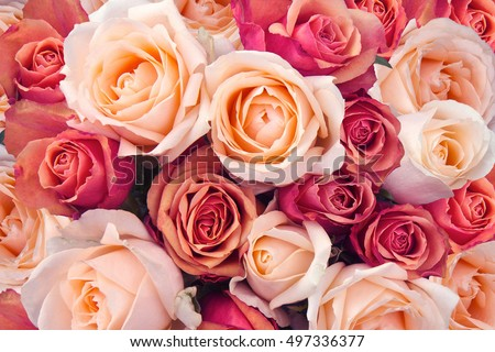 Romantic luxury bouquet of pink roses, flowers in bloom as flora Stock photo © Anneleven