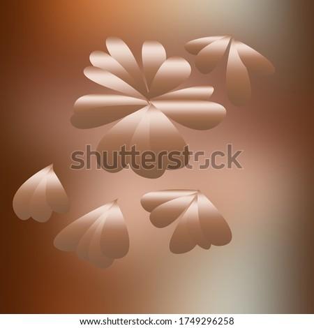красивой свет коричневый подушкой цветок Blossom Сток-фото © JohnKasawa