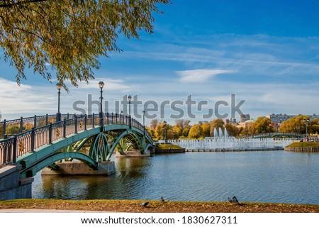 Autumn landscape with river and bridge in Catherine park, Pushki Stock photo © Pilgrimego