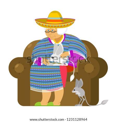 Mexicano abuela mascota vieja México silla Foto stock © popaukropa