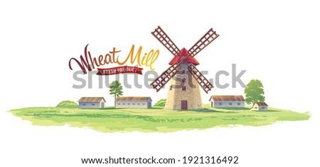 Poszter vidéki táj szélmalom pékség friss kenyér Stock fotó © Leo_Edition
