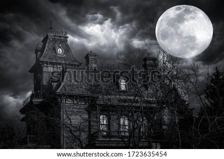 haunted house Stock photo © get4net