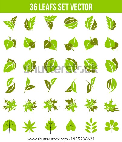 Go green concepts with palm and willow trees Stock photo © studioworkstock