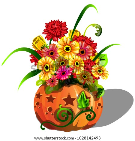 Handmade autumn decor of fresh flowers gerbera in natural vase of ripe pumpkin cut holes in the shap Stock photo © Lady-Luck