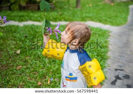 Tropische stengel tuin naar Stockfoto © galitskaya
