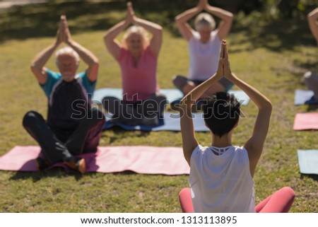 rear view of trainer training senior people in performing exercise on yoga mat at park stock photo © wavebreak_media