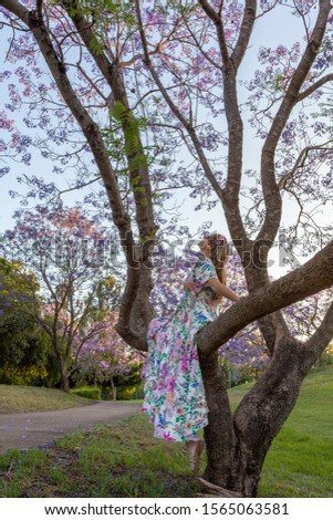 A woman sits in the branch of a tree admiring purple Jacaranda f Stock photo © lovleah