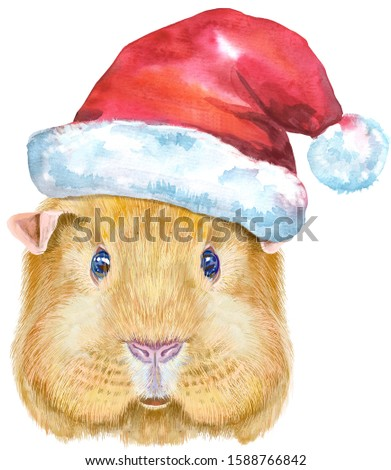 Watercolor portrait of English Self guinea pig with Santa hat on white background Stock photo © Natalia_1947