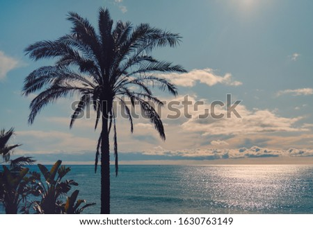 Idilli díszlet trópusi tájkép sziluett buja Stock fotó © amok
