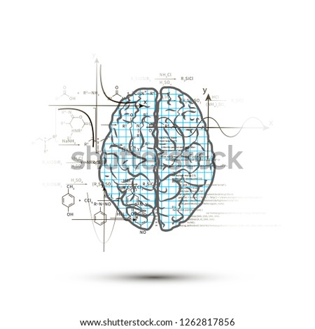 Técnico cérebro humano topo ver direito lado Foto stock © evgeny89