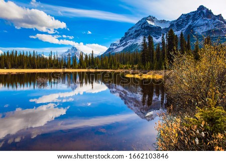 nature autumn mountains landscape rocky mountains and pine forest evening stock photo © leo_edition