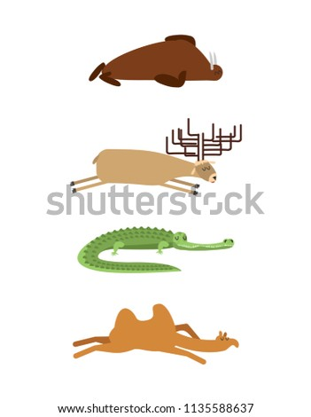 Sleeping animals set 1. Seal and moose. Crocodile and camel. wil Stock photo © popaukropa