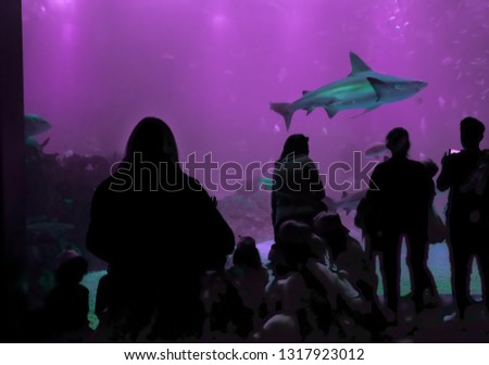 Oceanarium Underwater World. One Person Watching Shark in a Oceanarium Stock photo © matimix