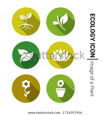 Hand icon and leaves with shadow on a green circle. Vector pharmacy illustration Stock photo © Imaagio
