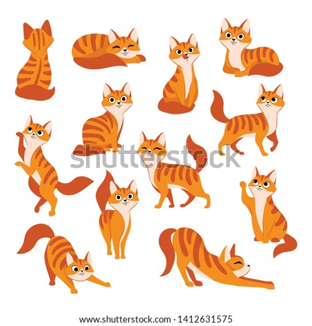 Set of Cats illustration In Different Poses and character design Stock photo © Margolana