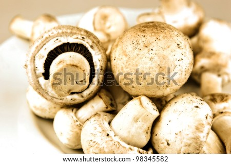 Ehető gomba megművelt fajok ital mezőgazdaság Stock fotó © nenovbrothers