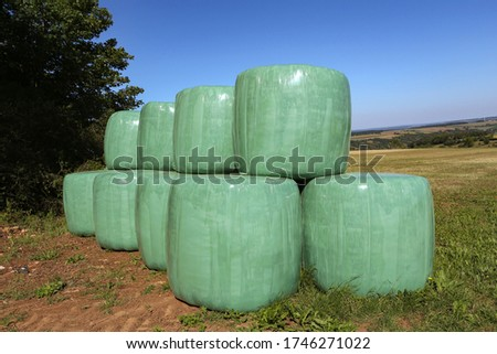 bale of straw packed in white plastic foil to protect against ba Stock photo © meinzahn