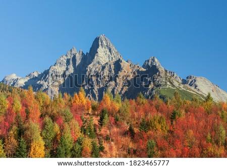 Panorama yol doğa manzara kaya Stok fotoğraf © pixelman