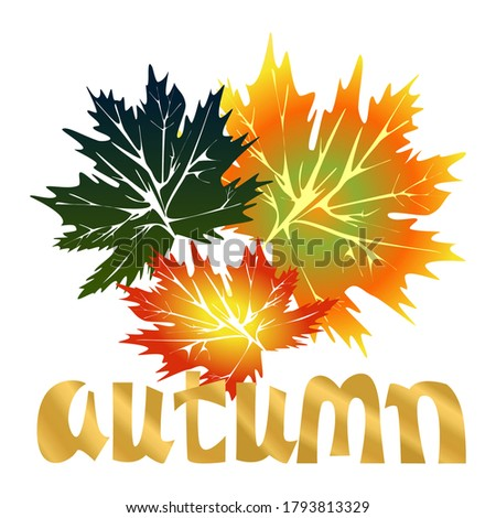 vector name of season autumn inscription with decorative umbrel stock photo © lissantee