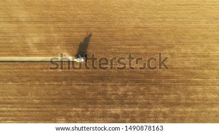 alan · mısır · ağustos · doğa · manzara · sağlık - stok fotoğraf © vlad_star
