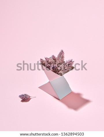 Set Karton Boxen Kiefer rosa Kopie Raum Stock foto © artjazz