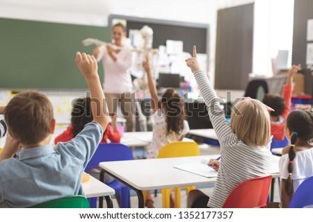 Achteraanzicht schooljongen uitleggen menselijke skelet model Stockfoto © wavebreak_media
