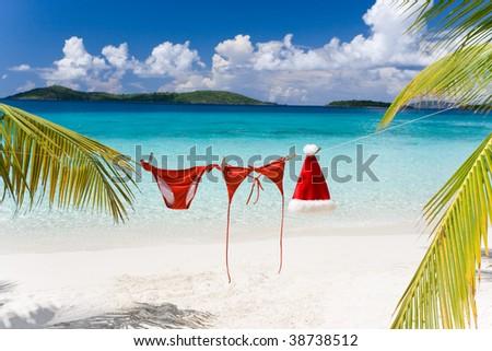 Piros kalap akasztás pálmafa trópusi tengerpart karácsony Stock fotó © galitskaya