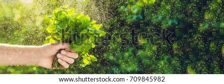 Szalag köteg menta kéz csobbanás víz Stock fotó © galitskaya