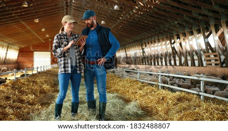 Two guys with gadgets watching video and pretty girl scrolling in smartphone Stock photo © pressmaster