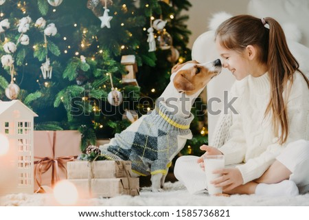 Lovely girl with pony tail, keeps noses together with favourite pet, drinks fresh milk from glass, s Stock photo © vkstudio