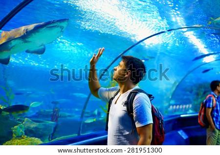 Aquarium garçon visiter subaquatique tunnel Kid Photo stock © galitskaya
