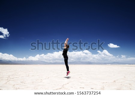 Salinas Grandes on Argentina Andes is a salt desert in the Jujuy Stock photo © xura