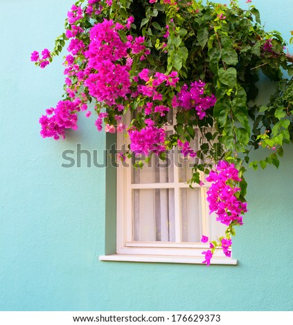 mediterranean wall and window decorated colorful flowers cordo stock photo © taiga
