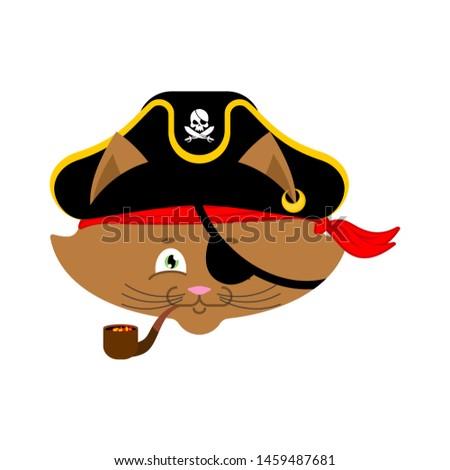 crâne · pirate · portrait · chapeau · oeil - photo stock © popaukropa