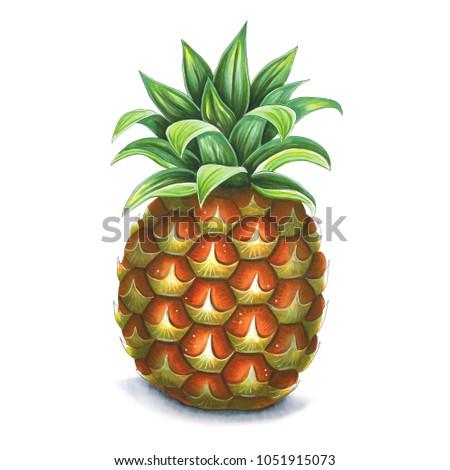 Ananász fehér rajz alkohol piacok konzerv Stock fotó © user_10003441
