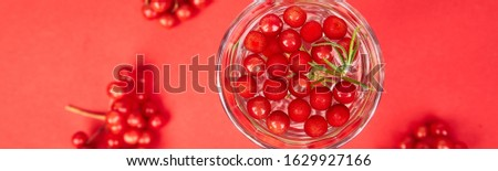 Tasty cold fresh drink, detox water with viburnum berry, rosemary Stock photo © Illia