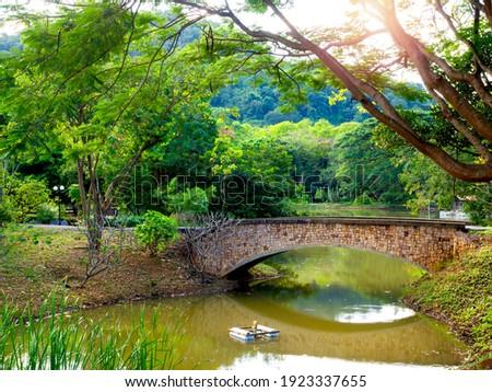 Tégla ív fa tó öreg zöld fa Stock fotó © vapi