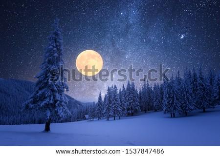 Colina cena noite ilustração projeto fundo Foto stock © colematt