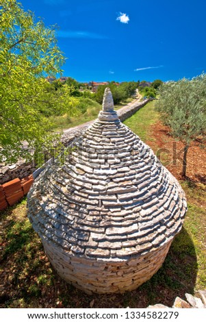 Olive tree field and traditional Istrian Kazun stone hut view Stock photo © xbrchx