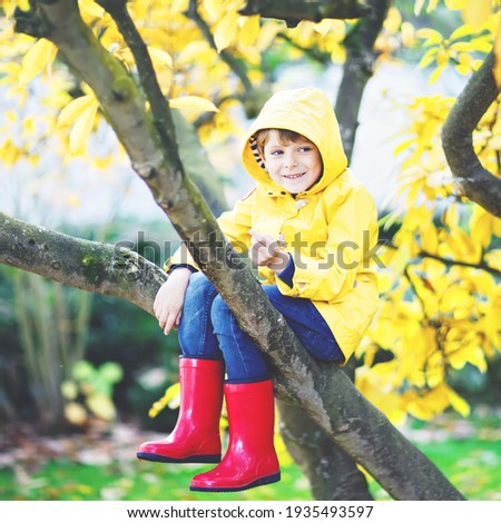Cute little kid boy enjoying autumn day. Preschool child in colorful autumnal clothes learning to cl Stock photo © galitskaya