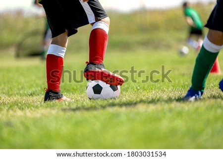 Child training soccer on fresh grass pitch. Soccer camp for kids Stock photo © matimix