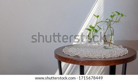 Gebruikt plastic fles groen blad schaduwen Blauw Stockfoto © artjazz