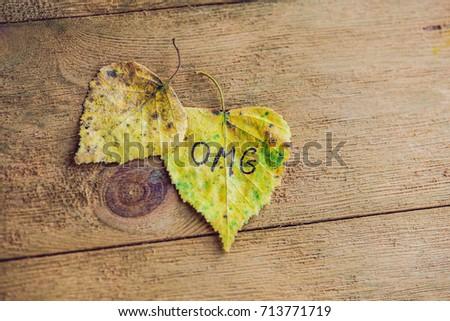 Geel groen blad opschrift omg oude houten Stockfoto © galitskaya