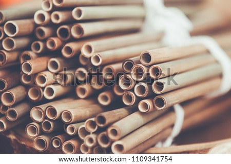 ecological bamboo straw or bamboo tube for drinking water just say 'no' to plastic small and lightwe Stock photo © galitskaya